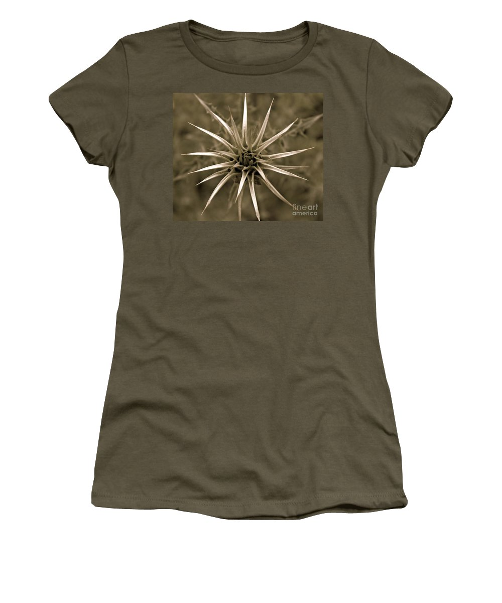 Milk Thistle Women's T-Shirt (Athletic Fit) featuring the photograph Early Thistle by Clare Bevan