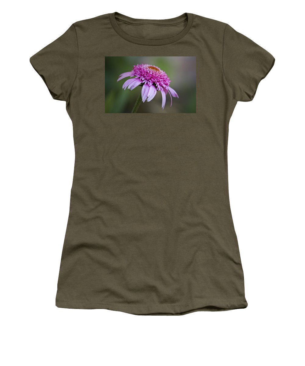 Pink Women's T-Shirt featuring the photograph Echinacea Pink Double Delight by Teresa Mucha