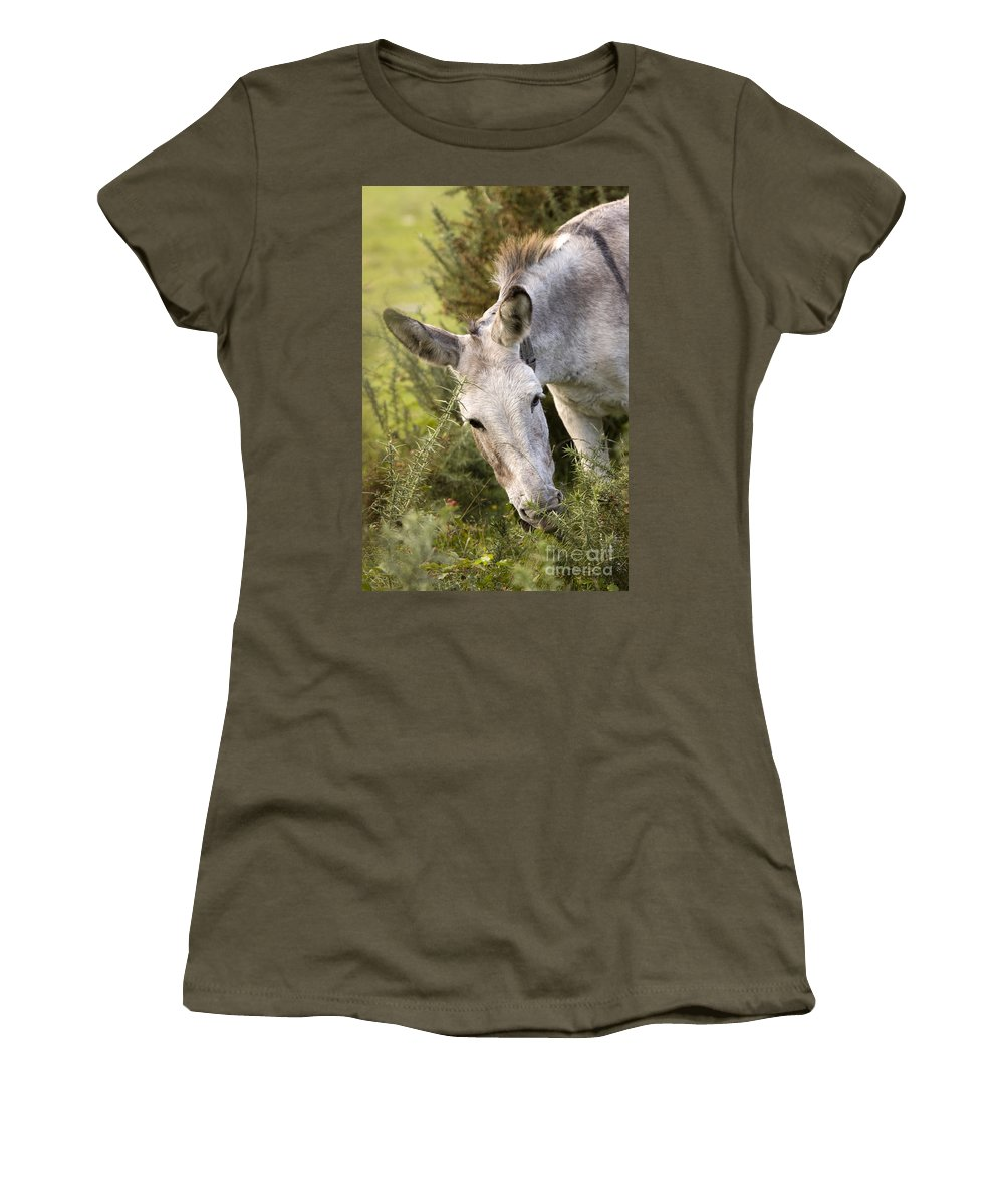 Donkey Women's T-Shirt (Athletic Fit) featuring the photograph Eeyore by Angel Ciesniarska