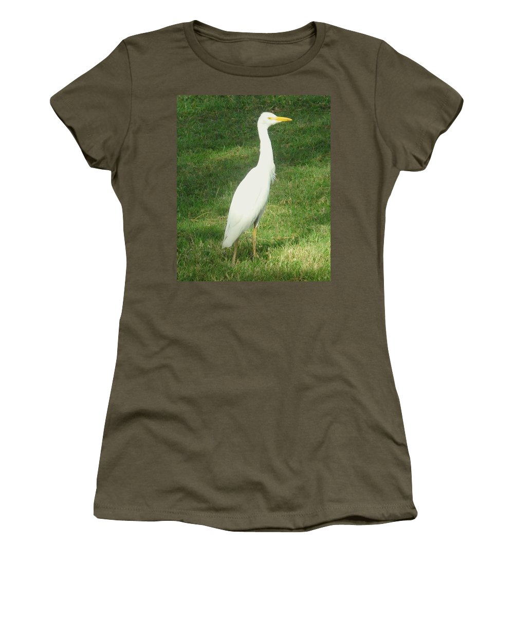 Egret Women's T-Shirt (Athletic Fit) featuring the photograph Egret Posing by Ian MacDonald