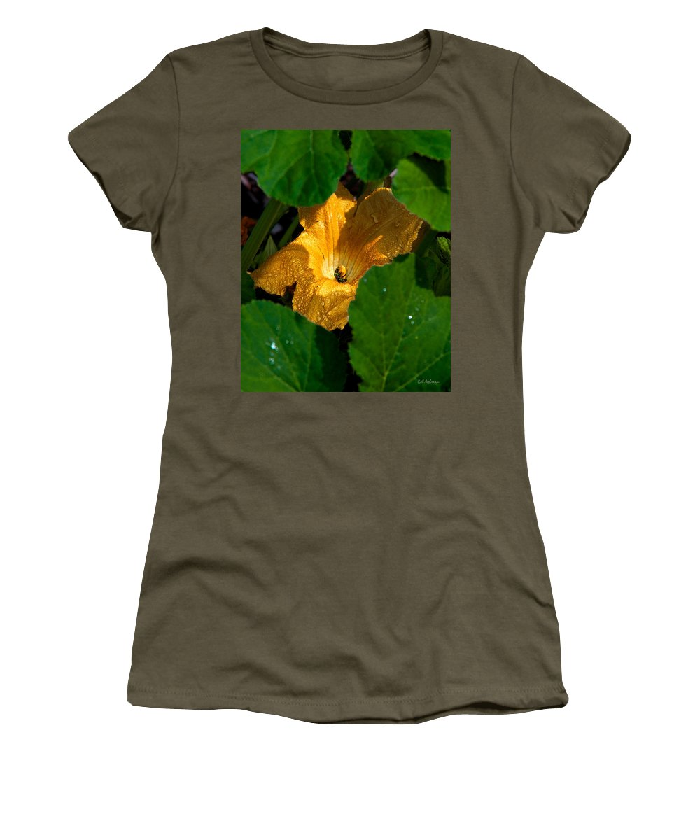 Squash Women's T-Shirt featuring the photograph Eldorado For Bees by Christopher Holmes