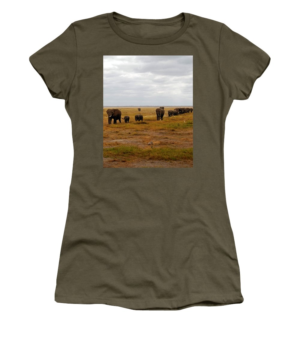 Elephants Women's T-Shirt featuring the photograph Elephant Herd by Pamela Peters