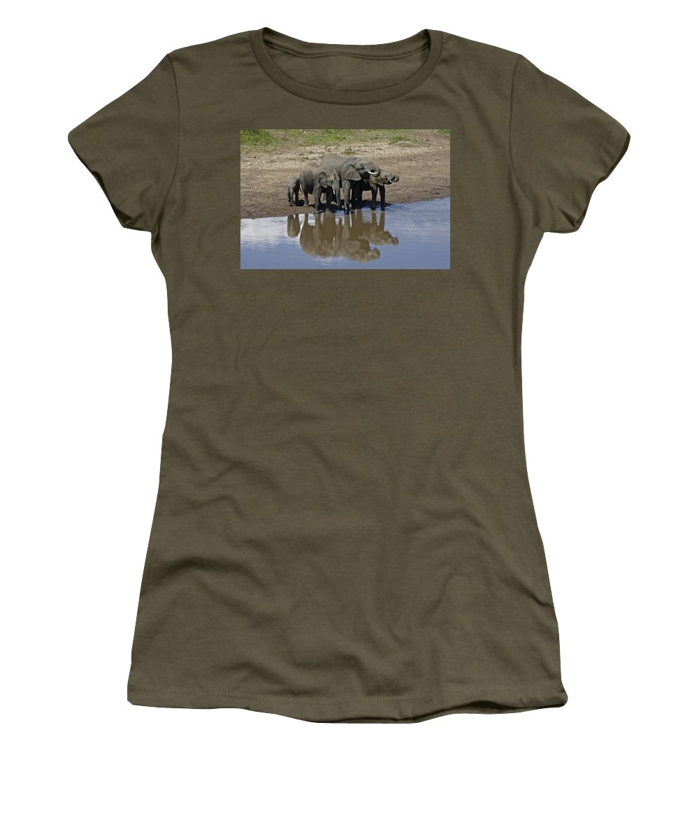 Africa Women's T-Shirt featuring the photograph Elephants In The Mirror by Michele Burgess