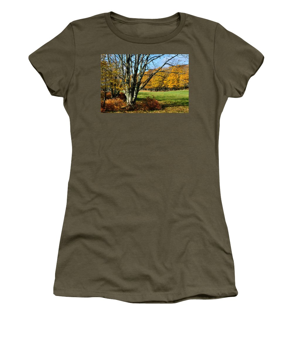 Trees Women's T-Shirt featuring the photograph Fall Pasture by Tim Nyberg