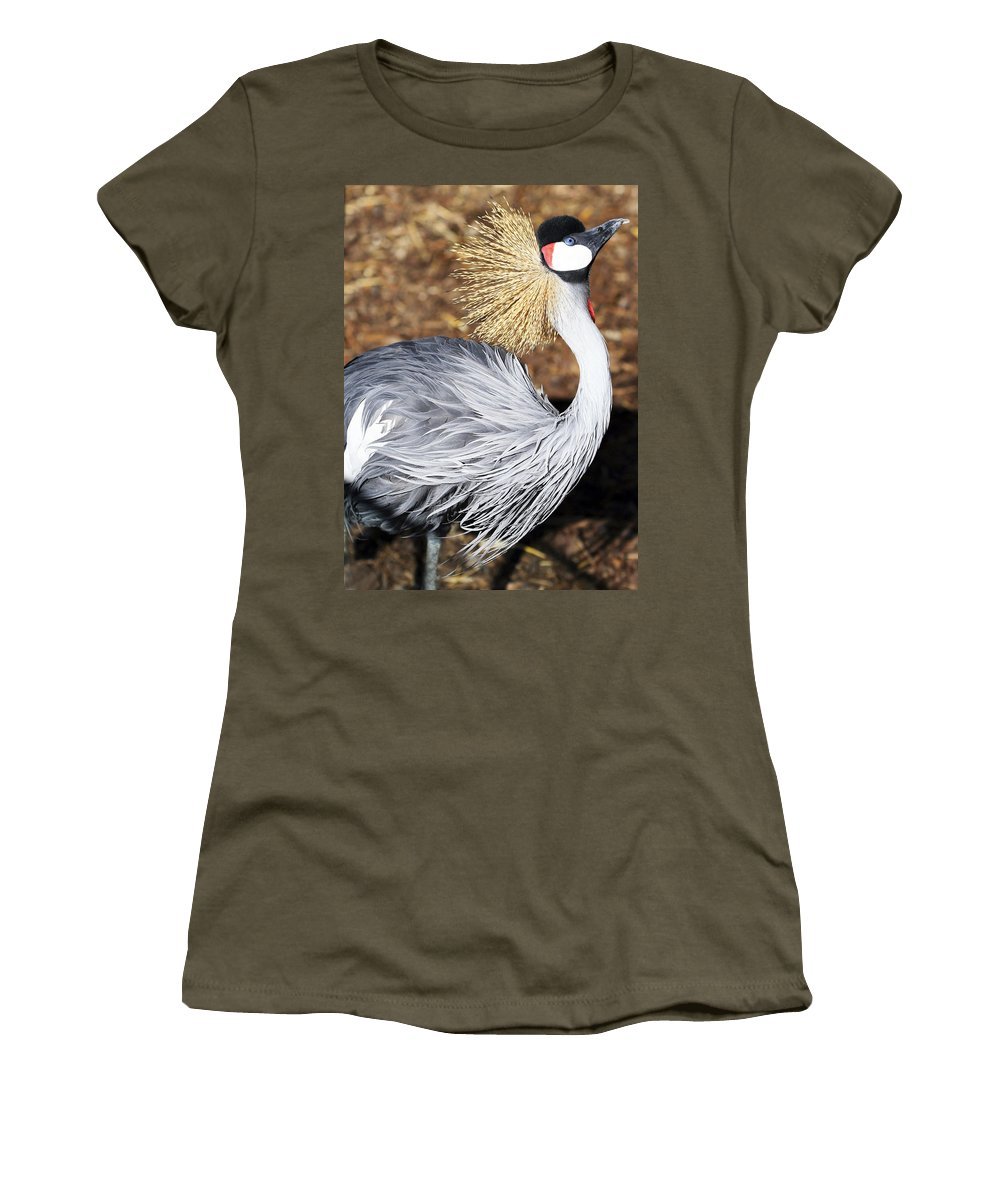 Bird Women's T-Shirt (Athletic Fit) featuring the photograph Fancy Feathers by Marilyn Hunt
