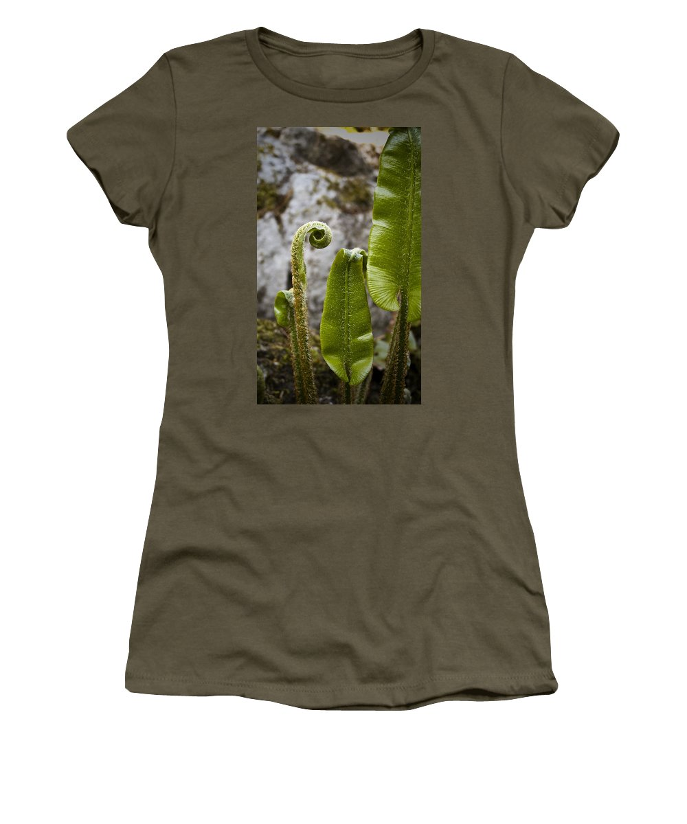 Irish Women's T-Shirt (Athletic Fit) featuring the photograph Fern Study At Blarney Castle Ireland by Teresa Mucha