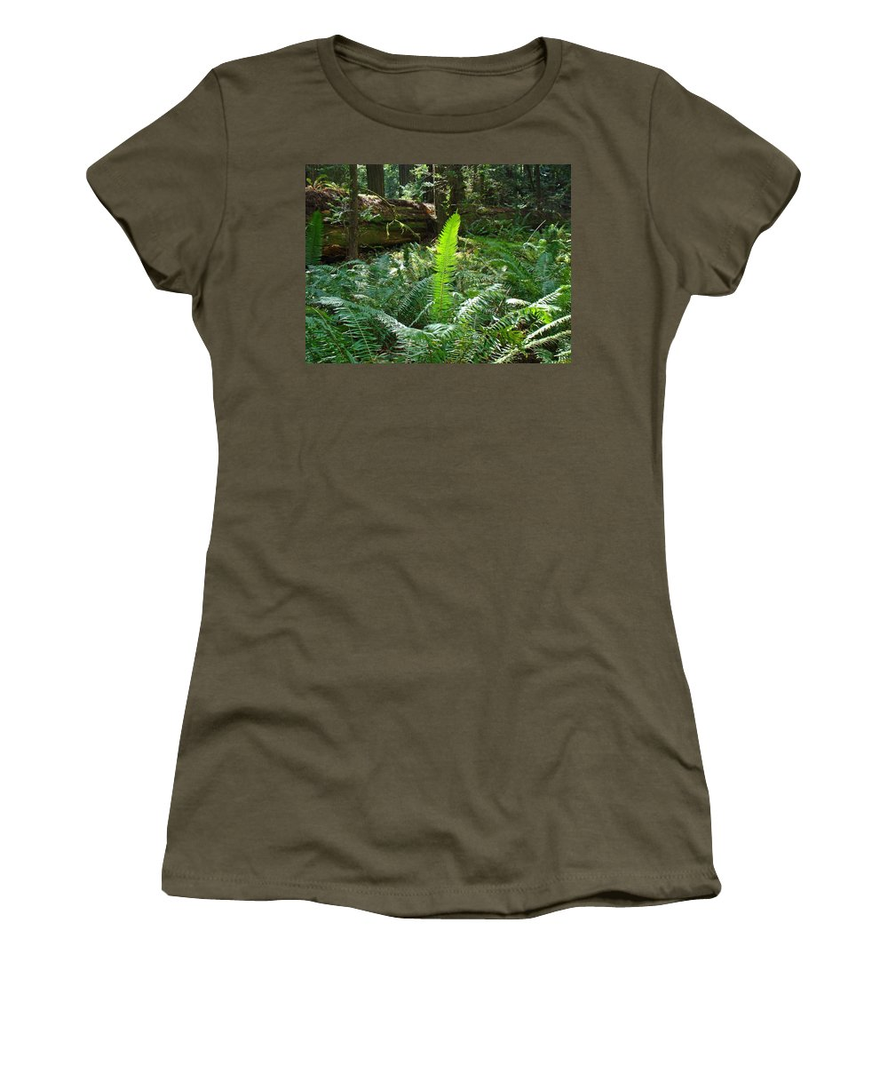 Fern Women's T-Shirt (Athletic Fit) featuring the photograph Ferns Sunlit Redwood Forest Fern Giclee Art Prints Baslee Troutman by Baslee Troutman