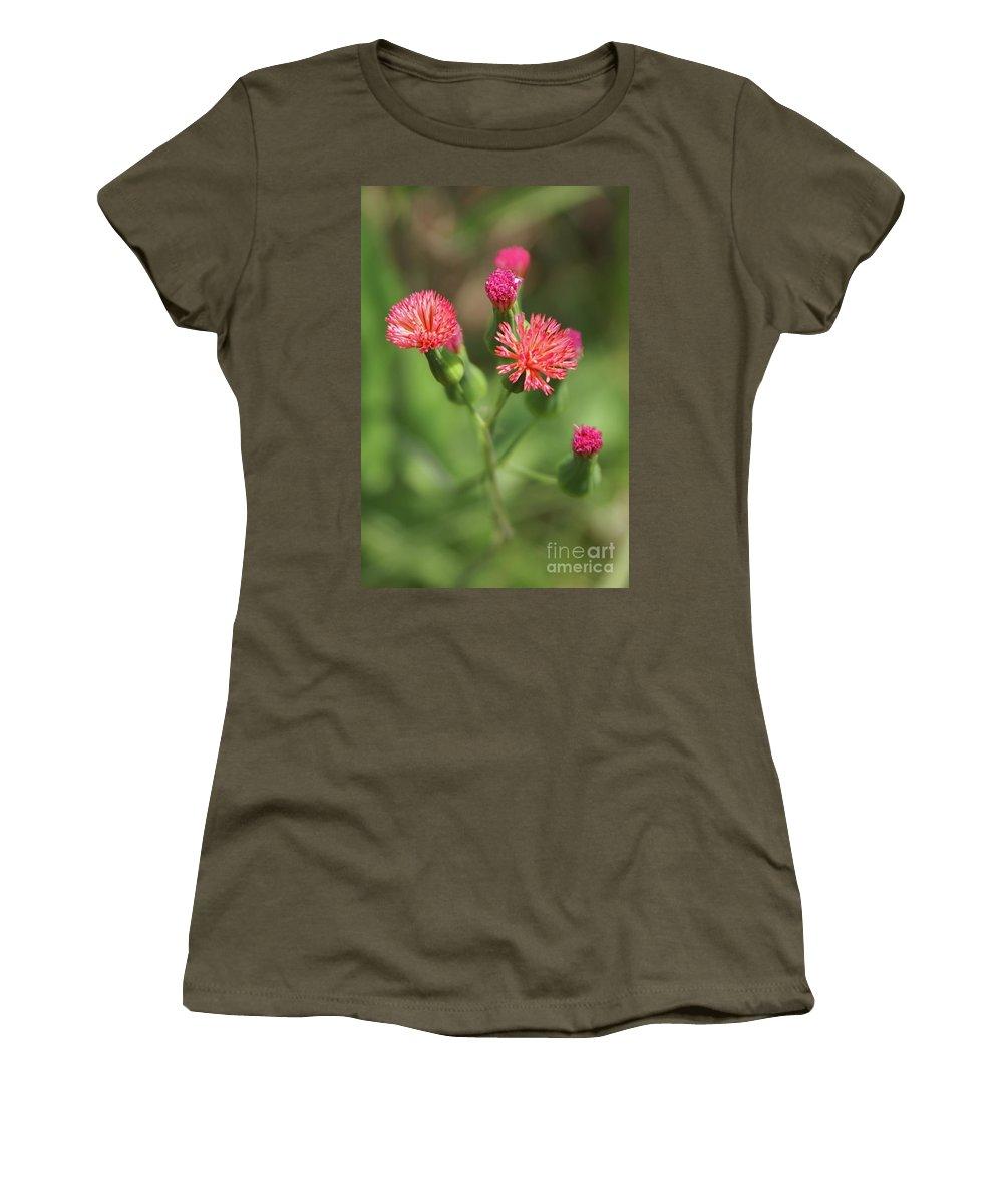 Wildflower Women's T-Shirt featuring the photograph Florida Tasselflower by Olga Hamilton