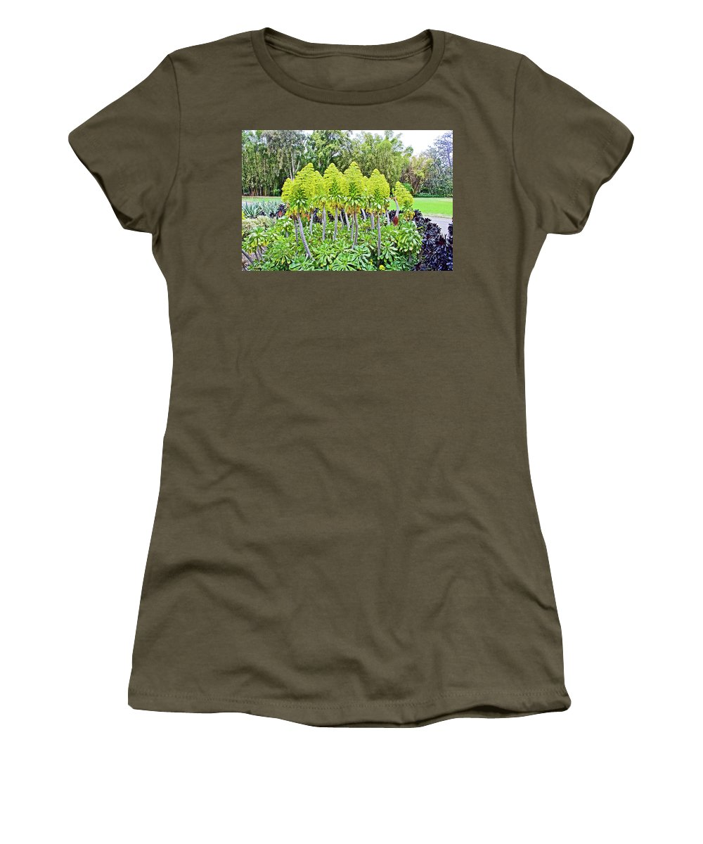 Flowering Green Aeonium In Huntington Desert Garden In Huntington Gardens In San Marino Women's T-Shirt featuring the photograph Flowering Green Aeonium In Huntington Desert Garden In San Marino-california by Ruth Hager