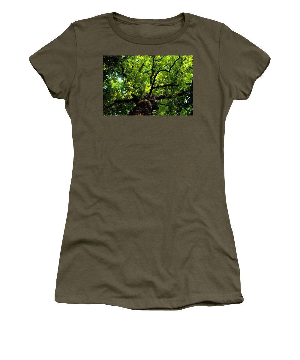 Forest Women's T-Shirt featuring the painting Forest Top by David Lee Thompson