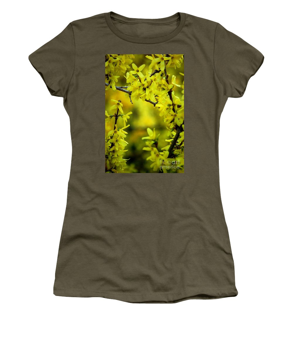Spring Women's T-Shirt (Athletic Fit) featuring the photograph Forsythia At The Hacienda by David Lane