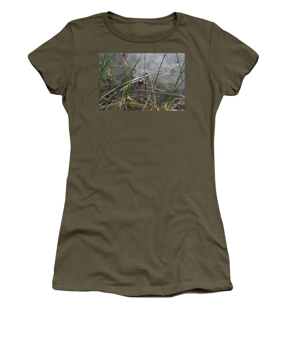 Frog Water Mother Nature Wild Reptile Eyes Lake Marsh Women's T-Shirt featuring the photograph Frog Home by Andrea Lawrence