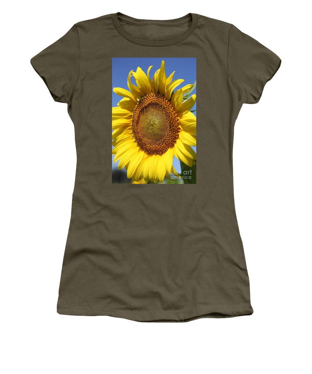 Sunflowers Women's T-Shirt (Athletic Fit) featuring the photograph Full by Amanda Barcon