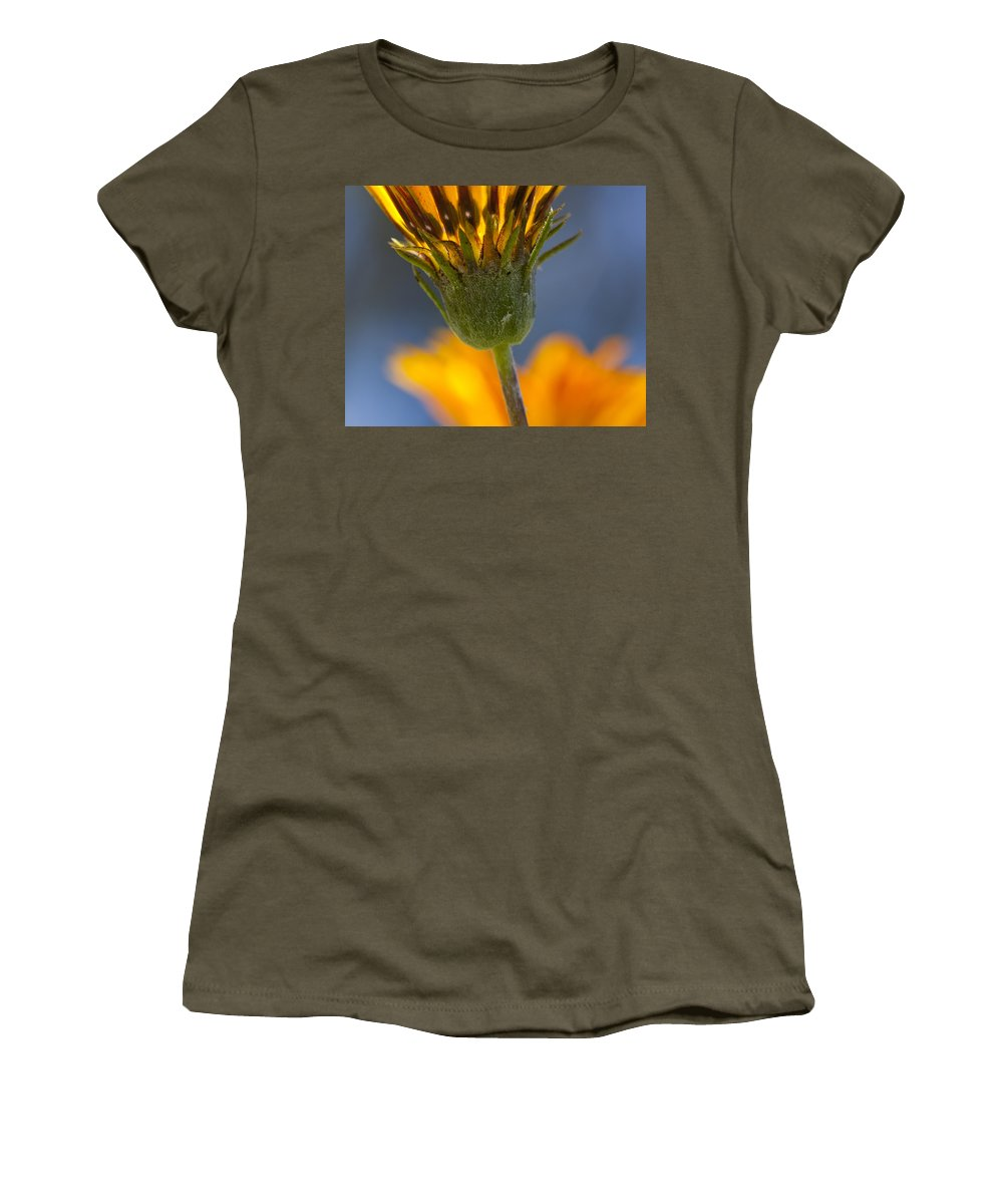 Flowers Women's T-Shirt featuring the photograph Gerbera Daisy by Kelley King