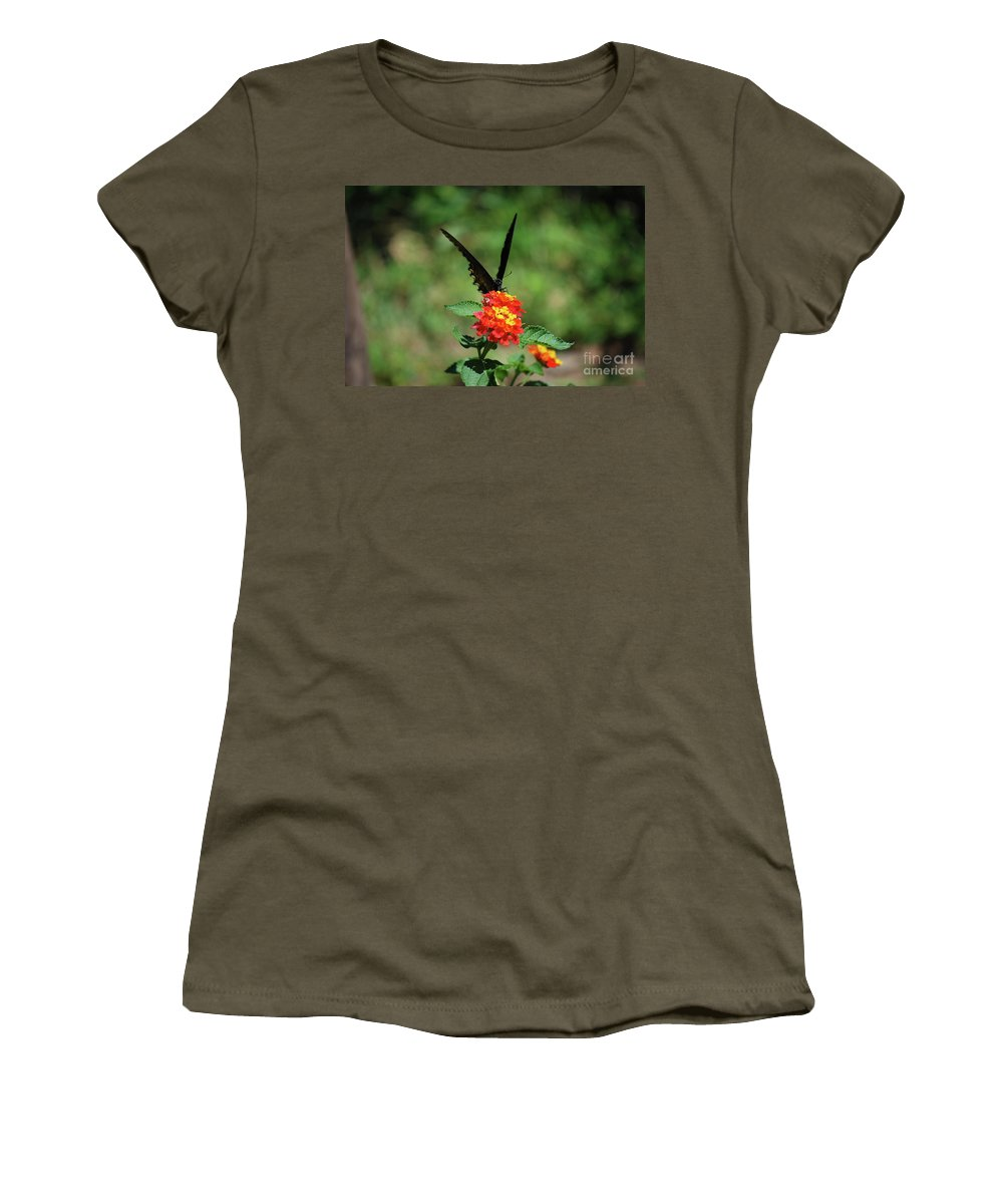 Swallowtail Women's T-Shirt featuring the photograph Give Me A V by Lori Tambakis