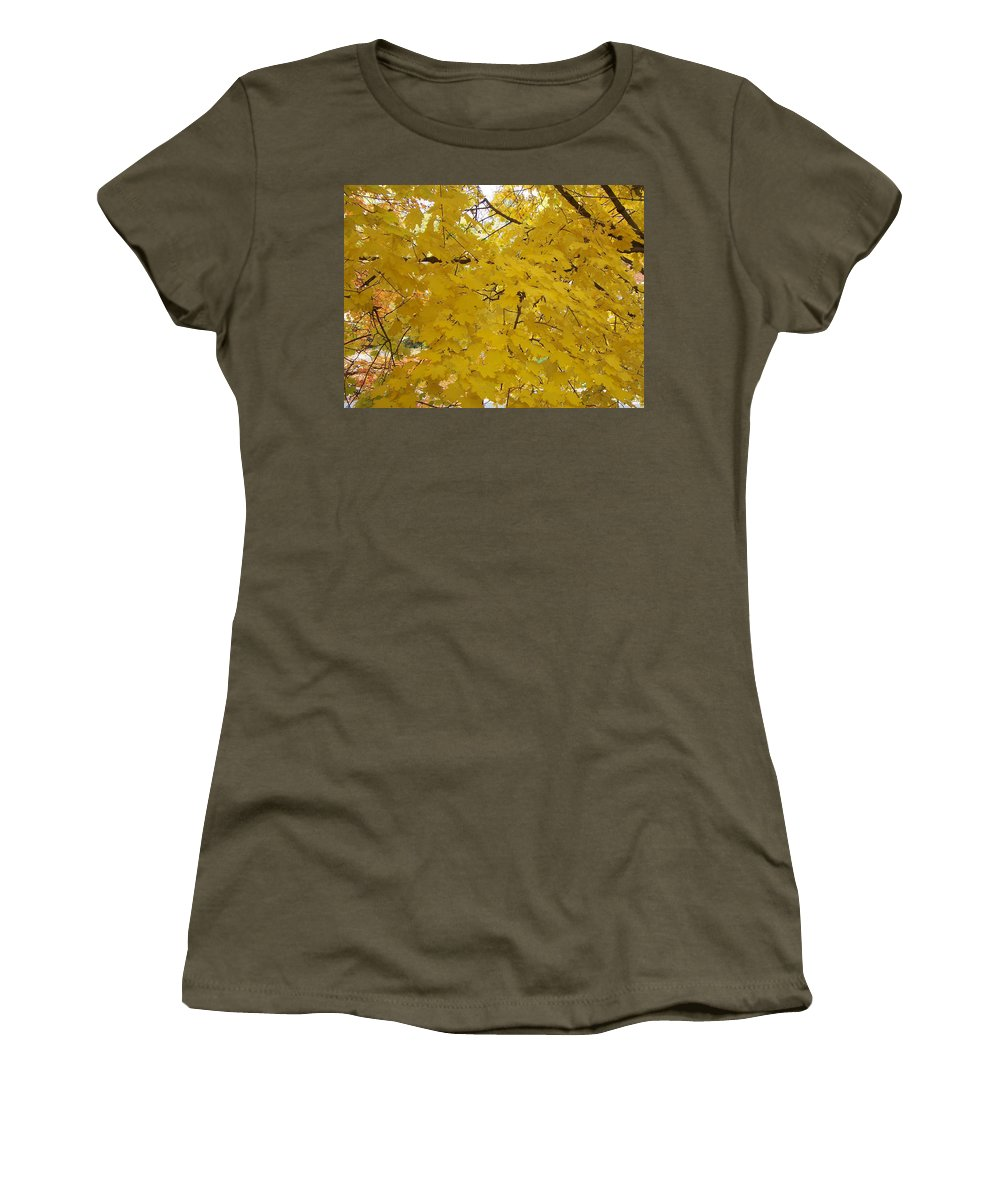 Fall Autum Trees Maple Yellow Women's T-Shirt featuring the photograph Golden Canopy by Karin Dawn Kelshall- Best