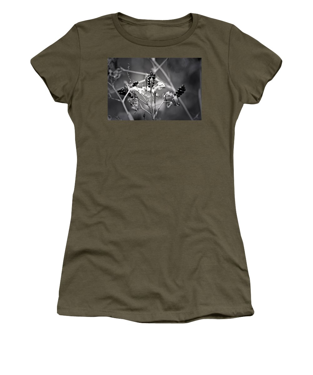 Flower Women's T-Shirt featuring the photograph Gone To Seed Berries And Vines by Teresa Mucha