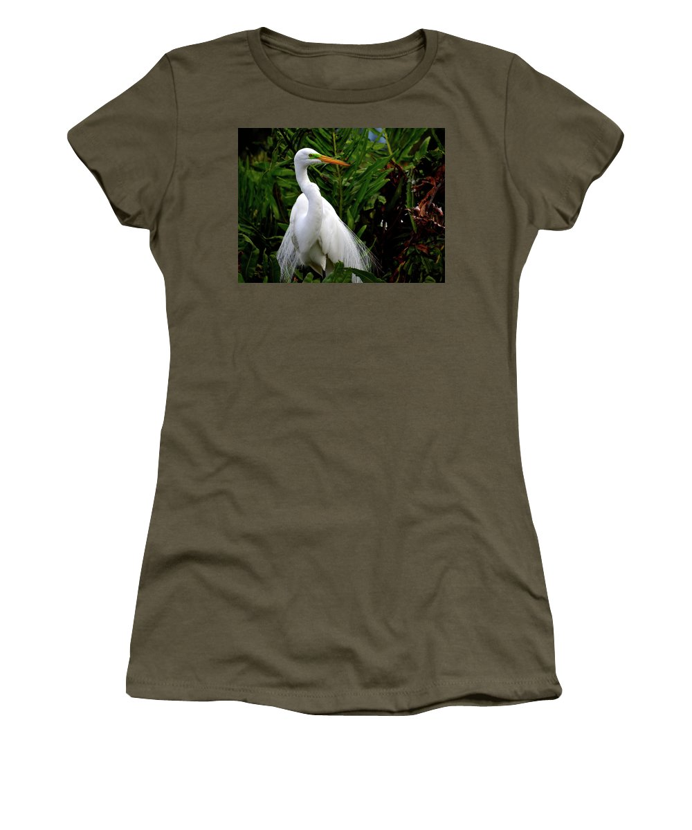 Environment Women's T-Shirt featuring the photograph Great Egret Nesting by Krista Russell