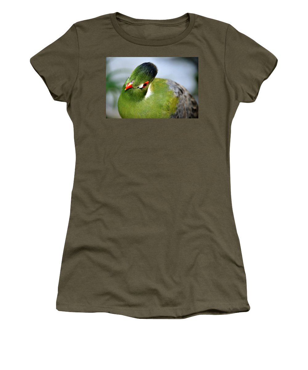Tropical Women's T-Shirt featuring the photograph Green Bird by David Lee Thompson