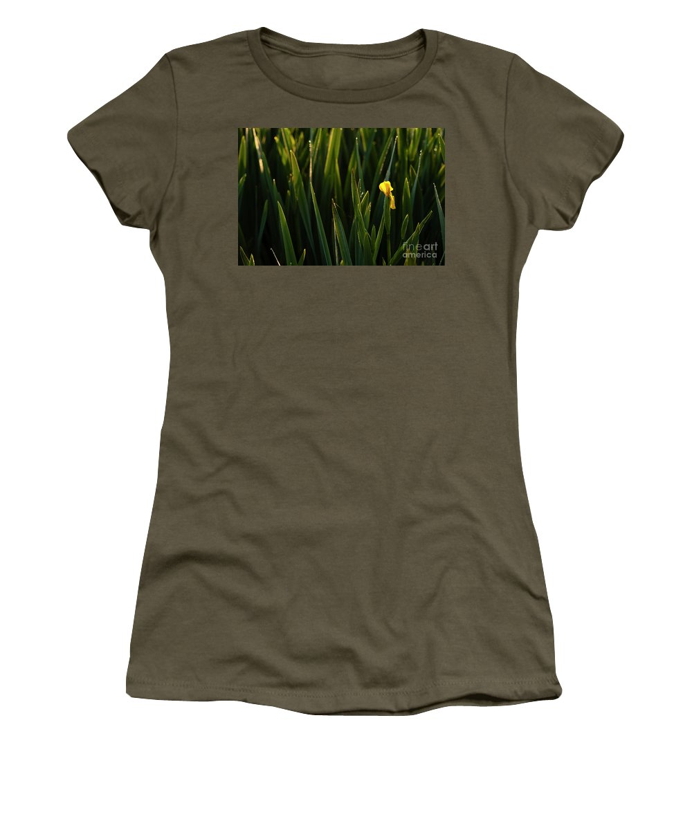 Pacific Northwest Women's T-Shirt featuring the photograph Green Marsh Grass At Sunrise On Lake Cassidy by Jim Corwin