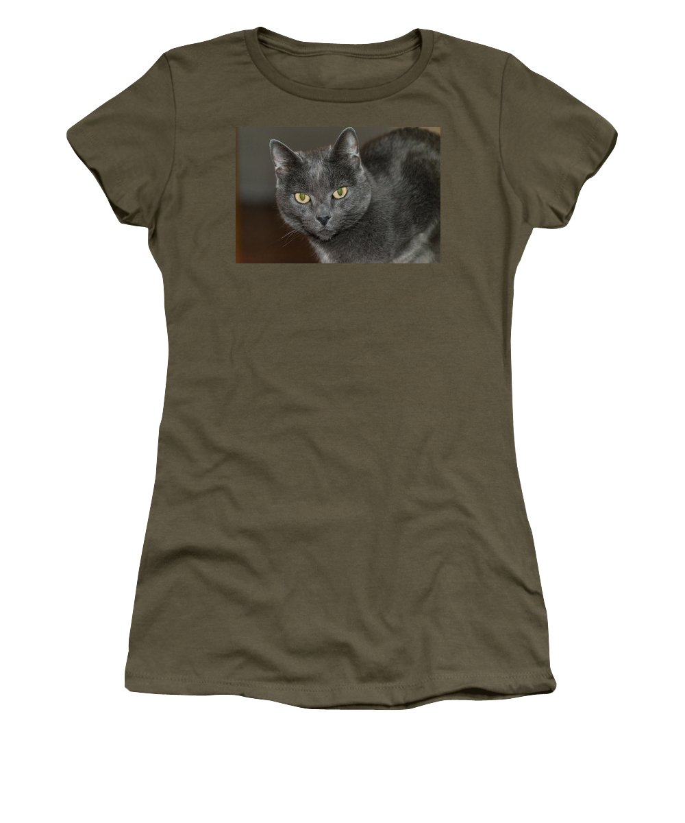 R3d Photography Women's T-Shirt (Athletic Fit) featuring the photograph Grey Cat With Yellow Eyes by Ray Sheley