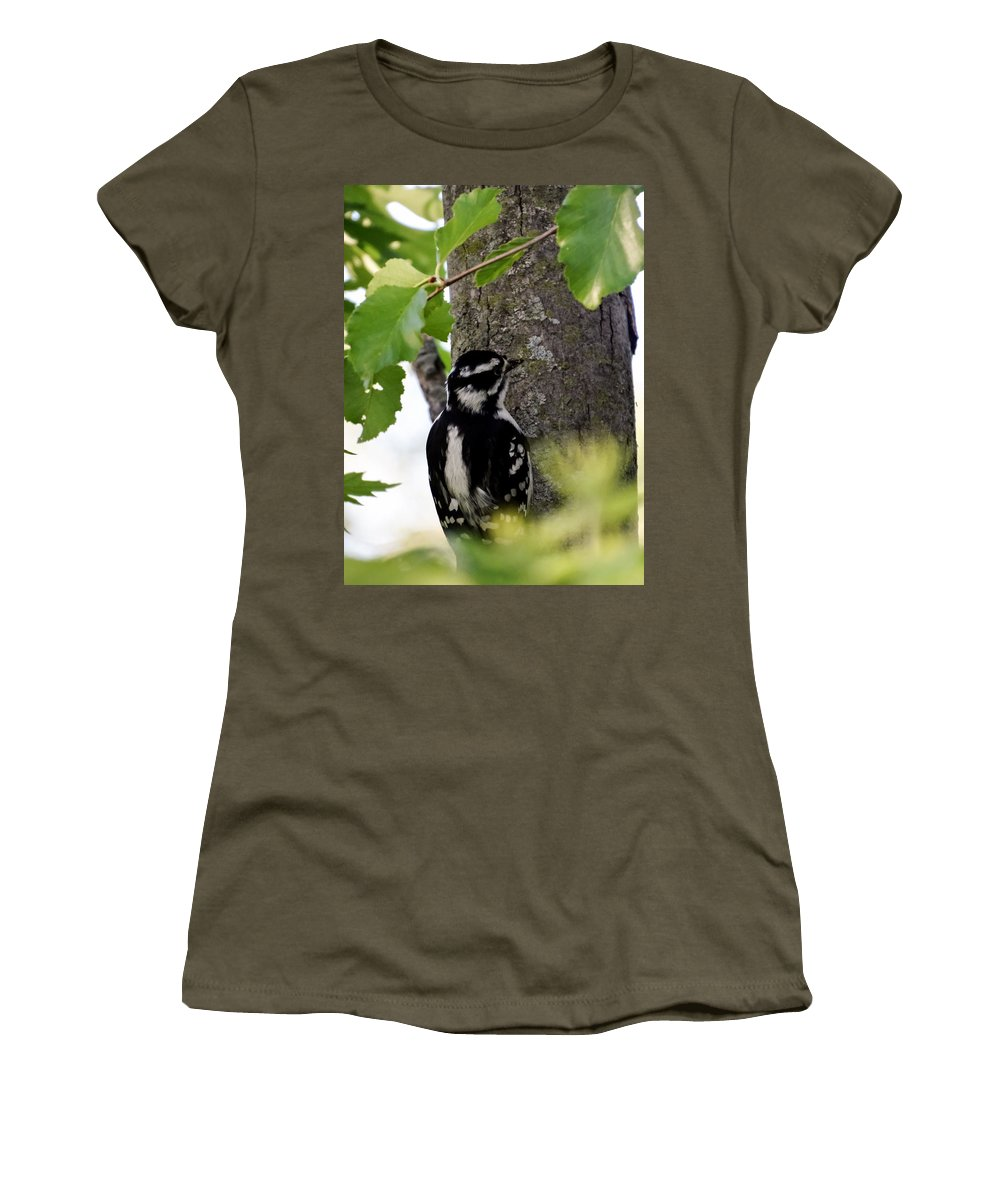 Downy Woodpecker 01 Women's T-Shirt featuring the photograph Downy Woodpecker 01 by Cynthia Woods