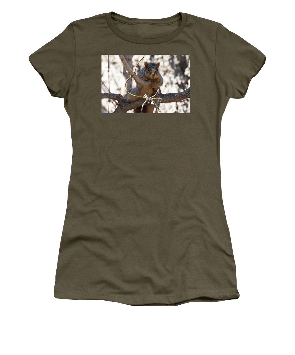 Squirrels Women's T-Shirt featuring the photograph Hanging Around by Lori Tordsen