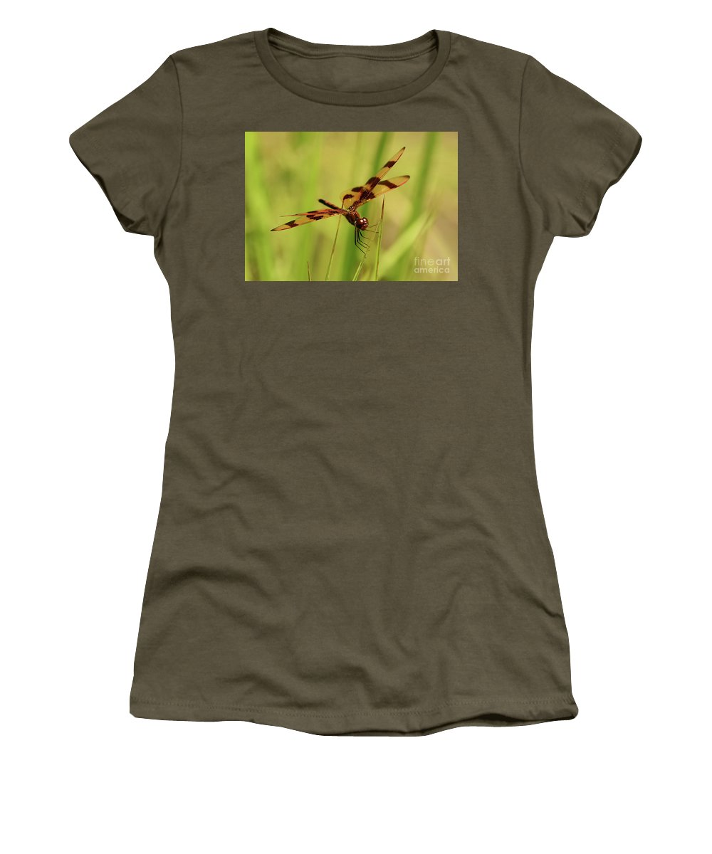 Dragon Fly Women's T-Shirt (Athletic Fit) featuring the photograph Hanging On by Arnie Goldstein