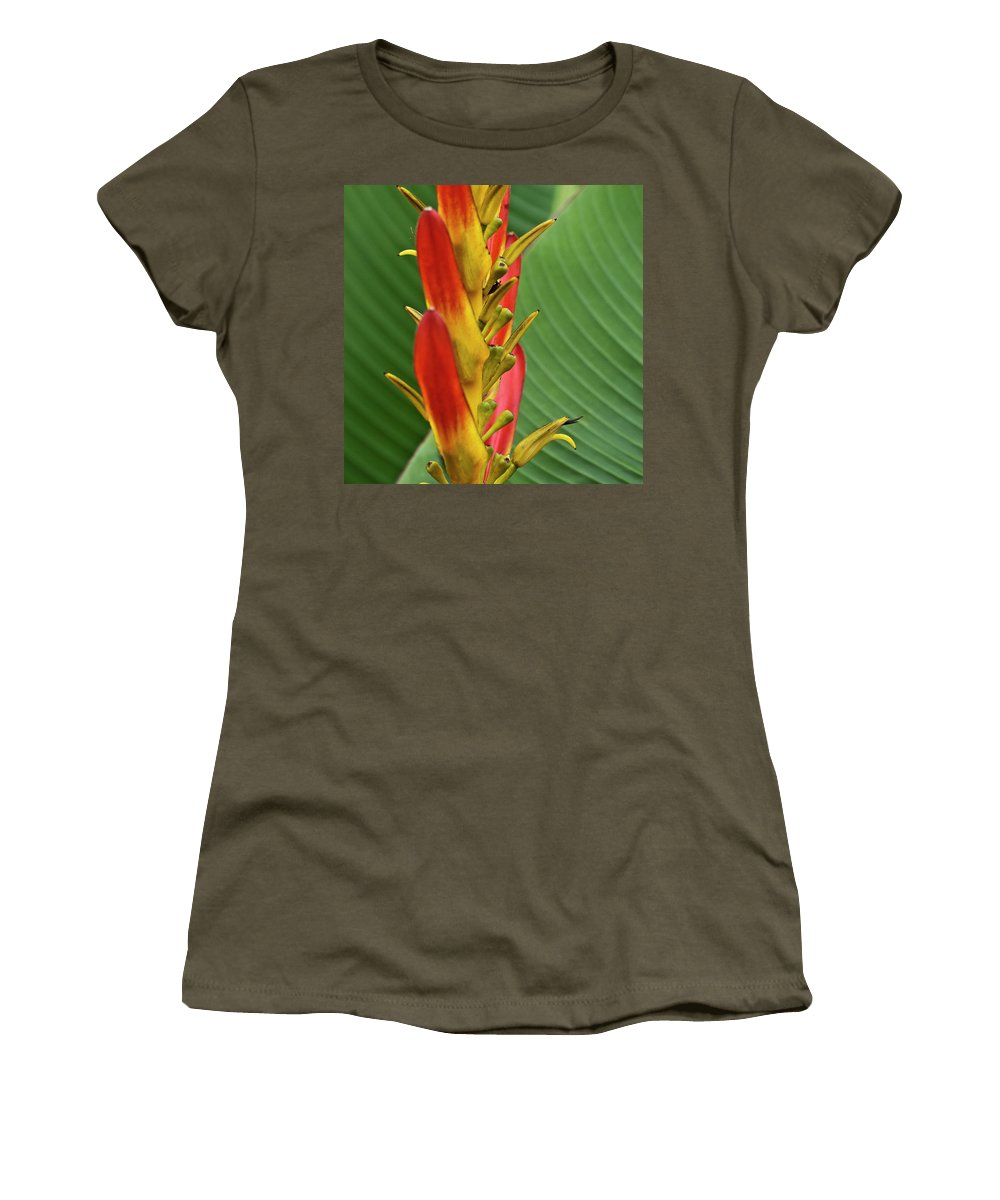 Heliconia Women's T-Shirt featuring the photograph Heliconia by Heiko Koehrer-Wagner