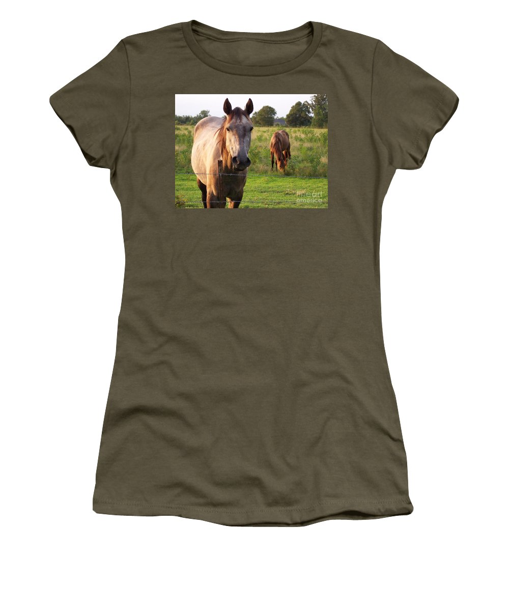 Horse Women's T-Shirt featuring the photograph Hello Stranger by Brandy Woods