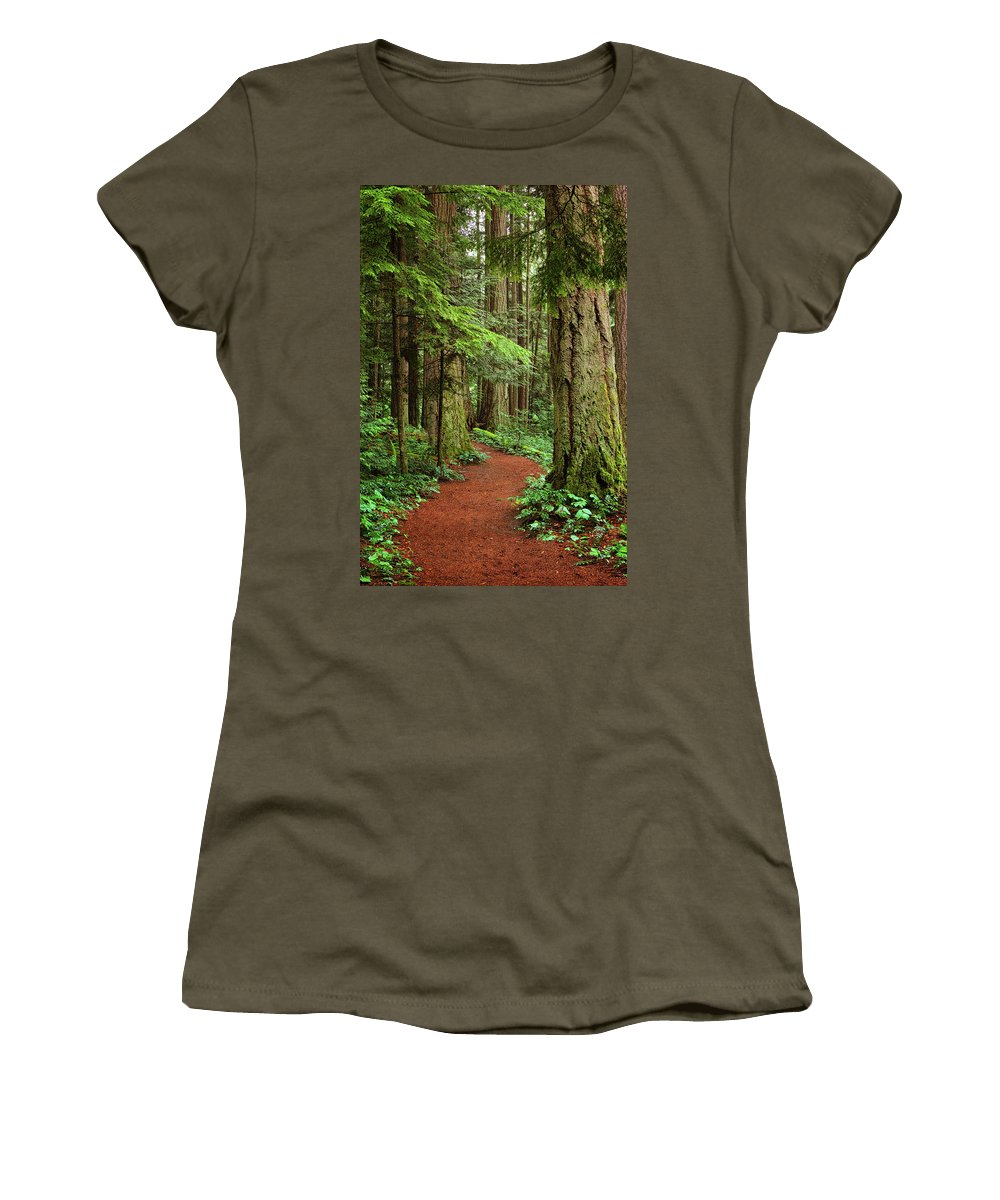 Forest Women's T-Shirt featuring the photograph Heritage Forest 2 by Randy Hall