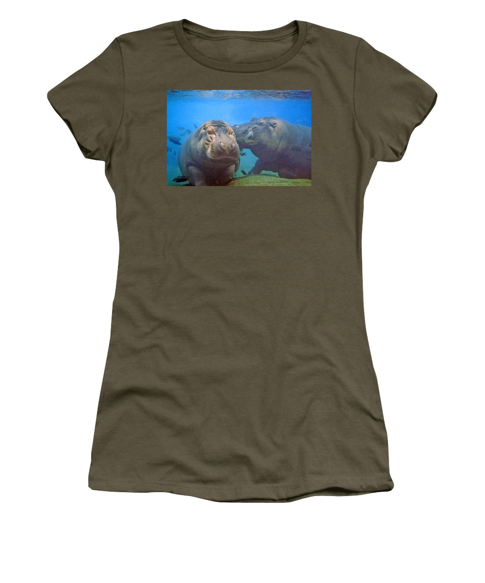 Animals Women's T-Shirt (Athletic Fit) featuring the photograph Hippos In Love by Steve Karol
