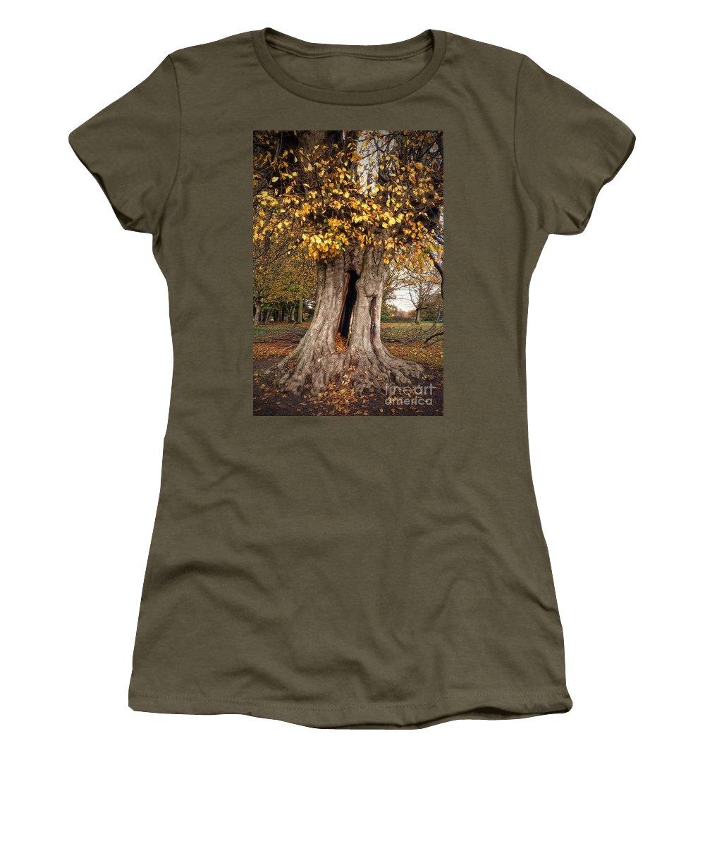 Tree Women's T-Shirt featuring the digital art Hollow Tree by Nigel Bangert