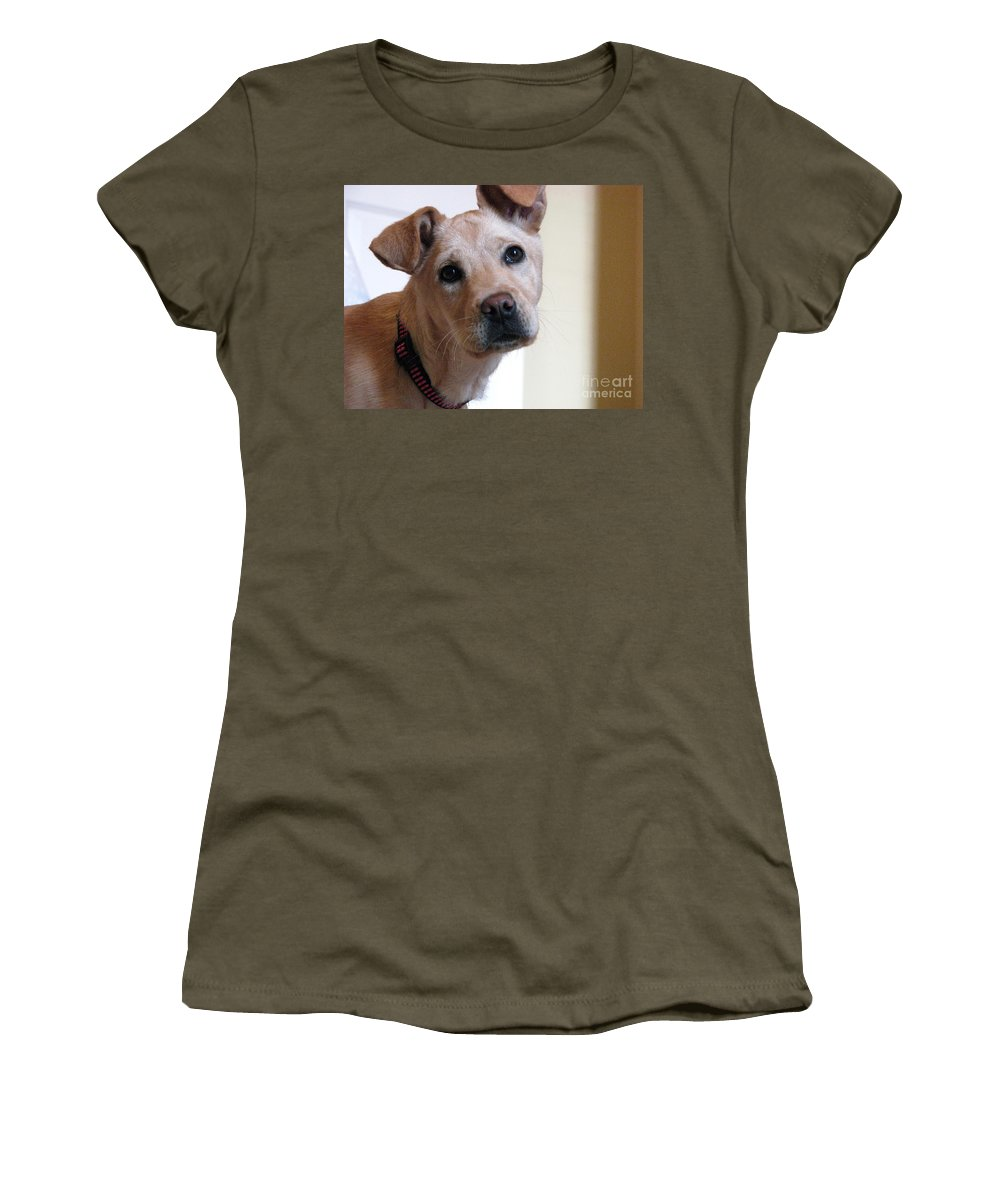 Dog Women's T-Shirt (Athletic Fit) featuring the photograph Honey by Amanda Barcon