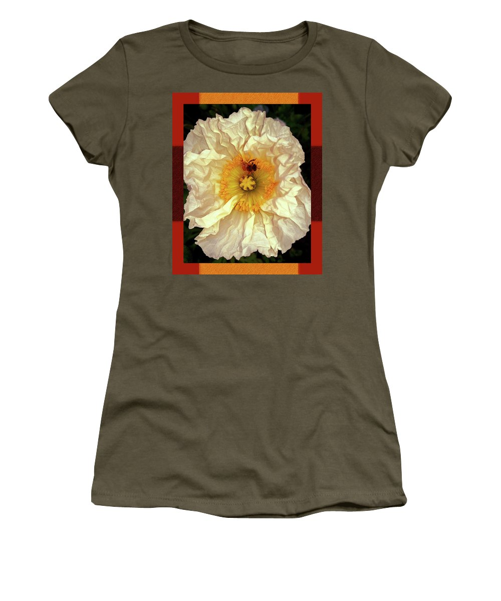 Honey Bee In Stunning White And Gold Flower Women's T-Shirt featuring the photograph Honey Bee In Stunning White And Gold Flower by Shirley Anderson