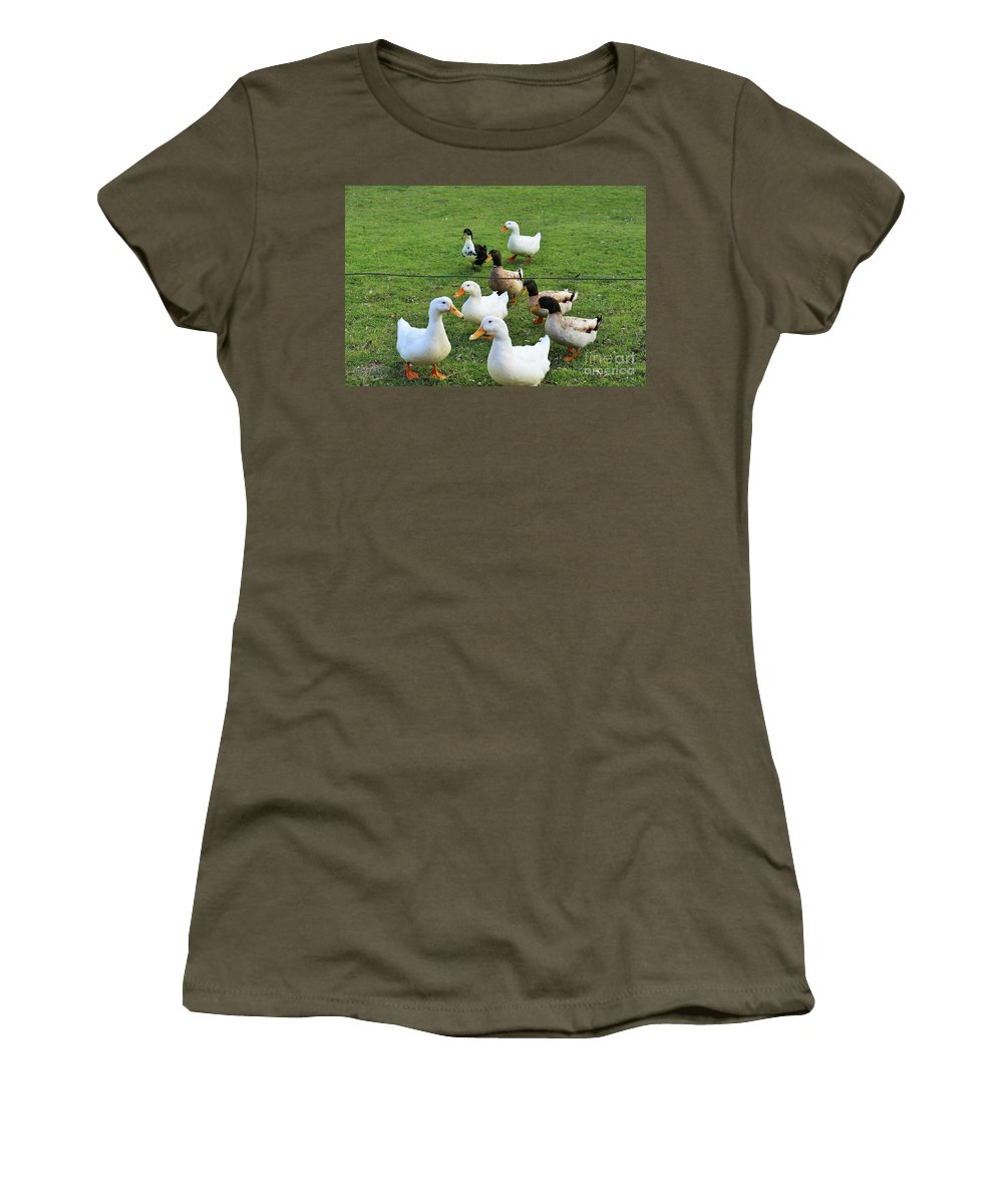 Women's T-Shirt featuring the photograph Huddle by Jeff Downs