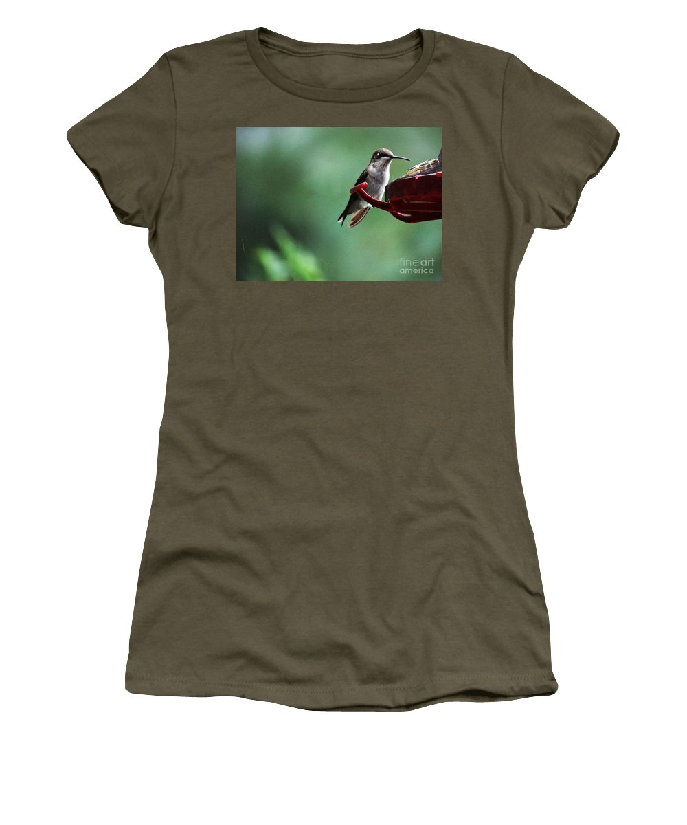 Hummingbird Women's T-Shirt (Athletic Fit) featuring the photograph Hummingbird At Rest by Gina Sullivan
