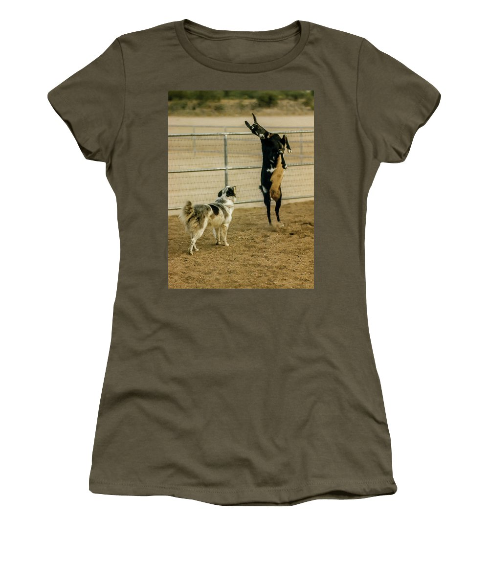 Dog Women's T-Shirt (Athletic Fit) featuring the photograph I Dare Ya by Elizabeth Hershkowitz