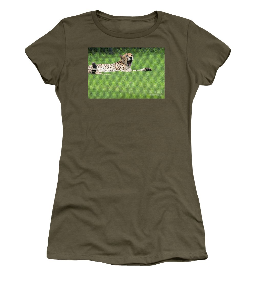 Snow Leopard Women's T-Shirt featuring the photograph I Think I Need A Nap by Tom Horsch Photography