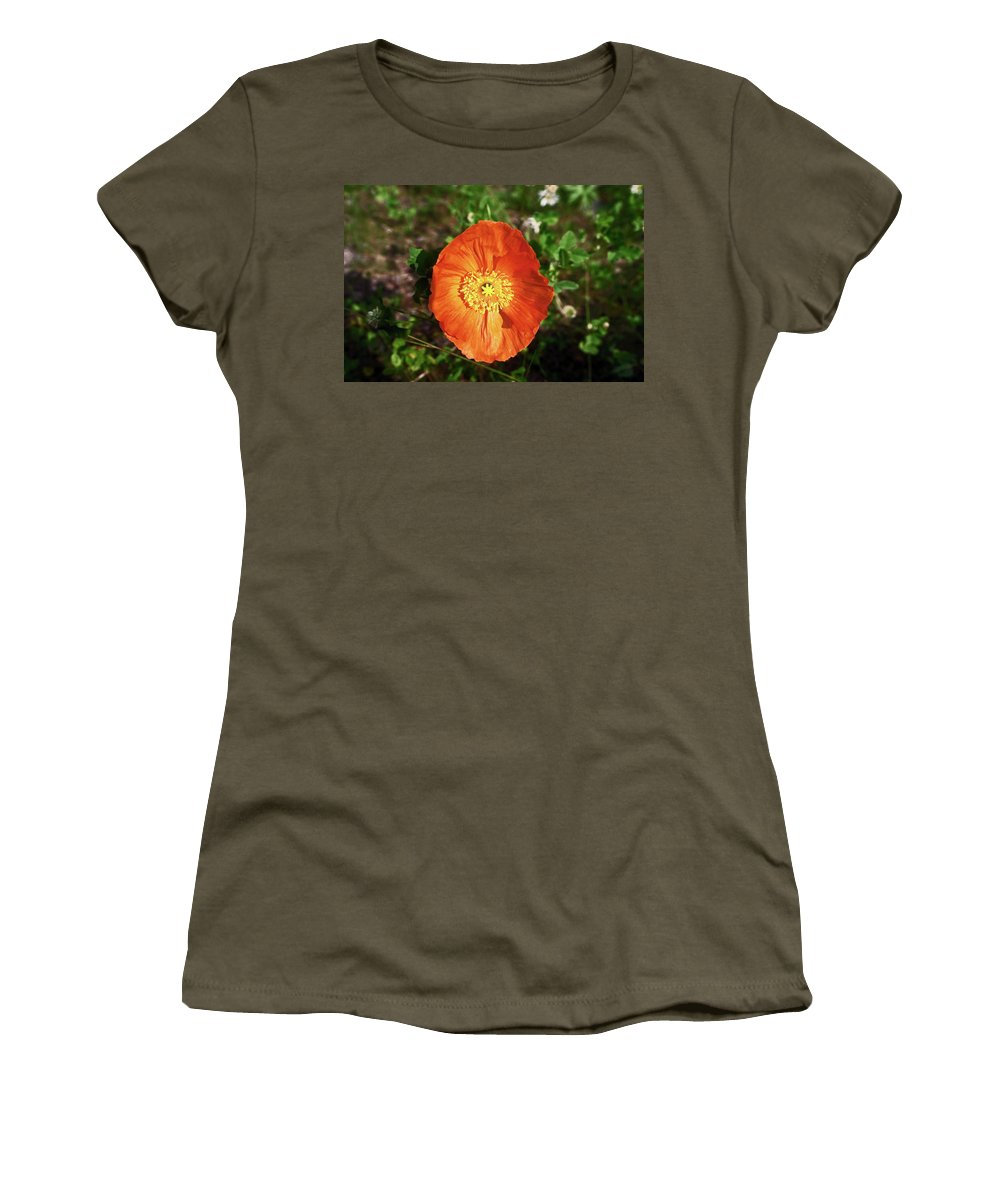 Iceland Poppy Women's T-Shirt featuring the photograph Iceland Poppy by Sally Weigand