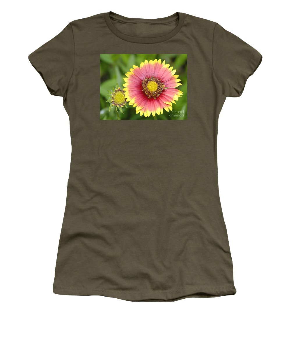 Indian Paintbrush Women's T-Shirt (Athletic Fit) featuring the photograph Indian Paintbrush by David Lee Thompson