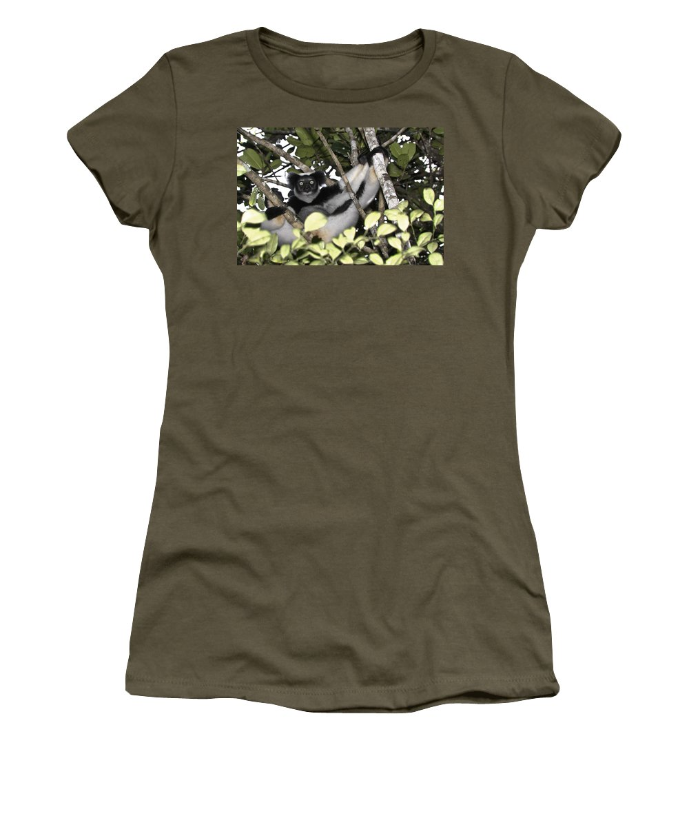 Madagascar Women's T-Shirt (Athletic Fit) featuring the photograph Indri Indri by Michele Burgess