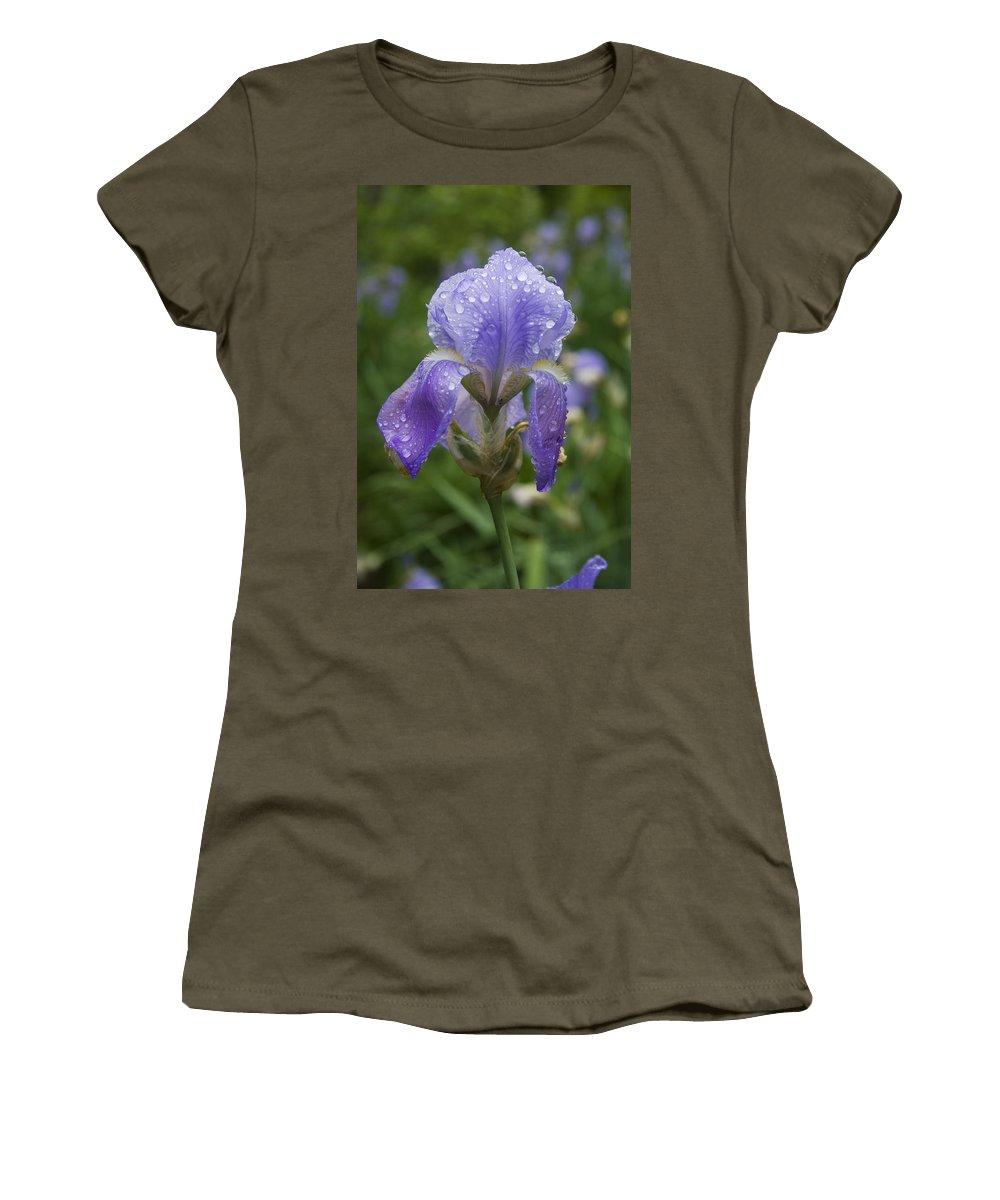 Iris Flower Blue Purple Green Rain Wet Drop Water Droplet Nature Garden Women's T-Shirt (Athletic Fit) featuring the photograph Iris After Rain by Andrei Shliakhau