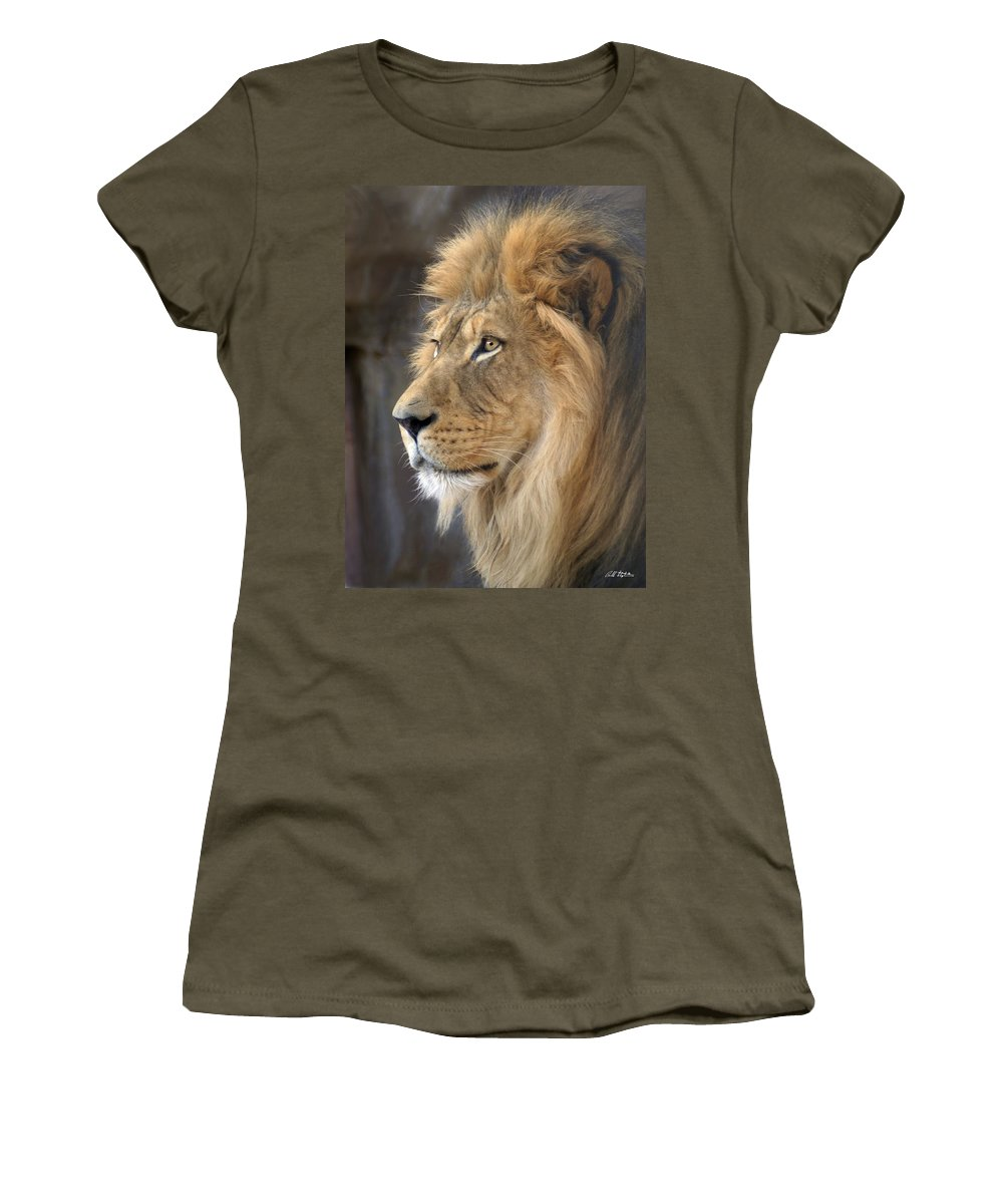 Lions Women's T-Shirt featuring the photograph Israel by Bill Stephens