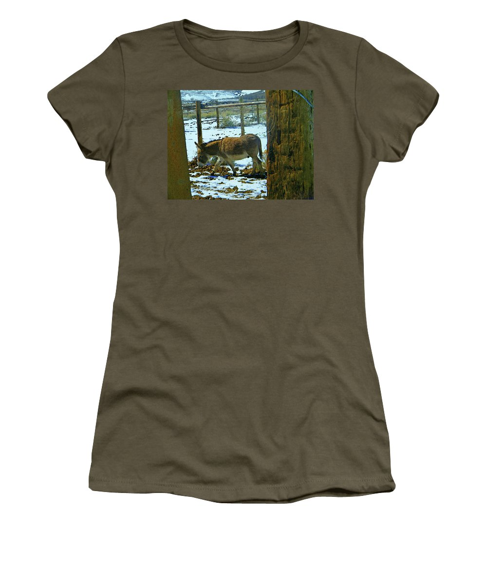 Abstract Women's T-Shirt (Athletic Fit) featuring the photograph Jasper Pouting by Lenore Senior