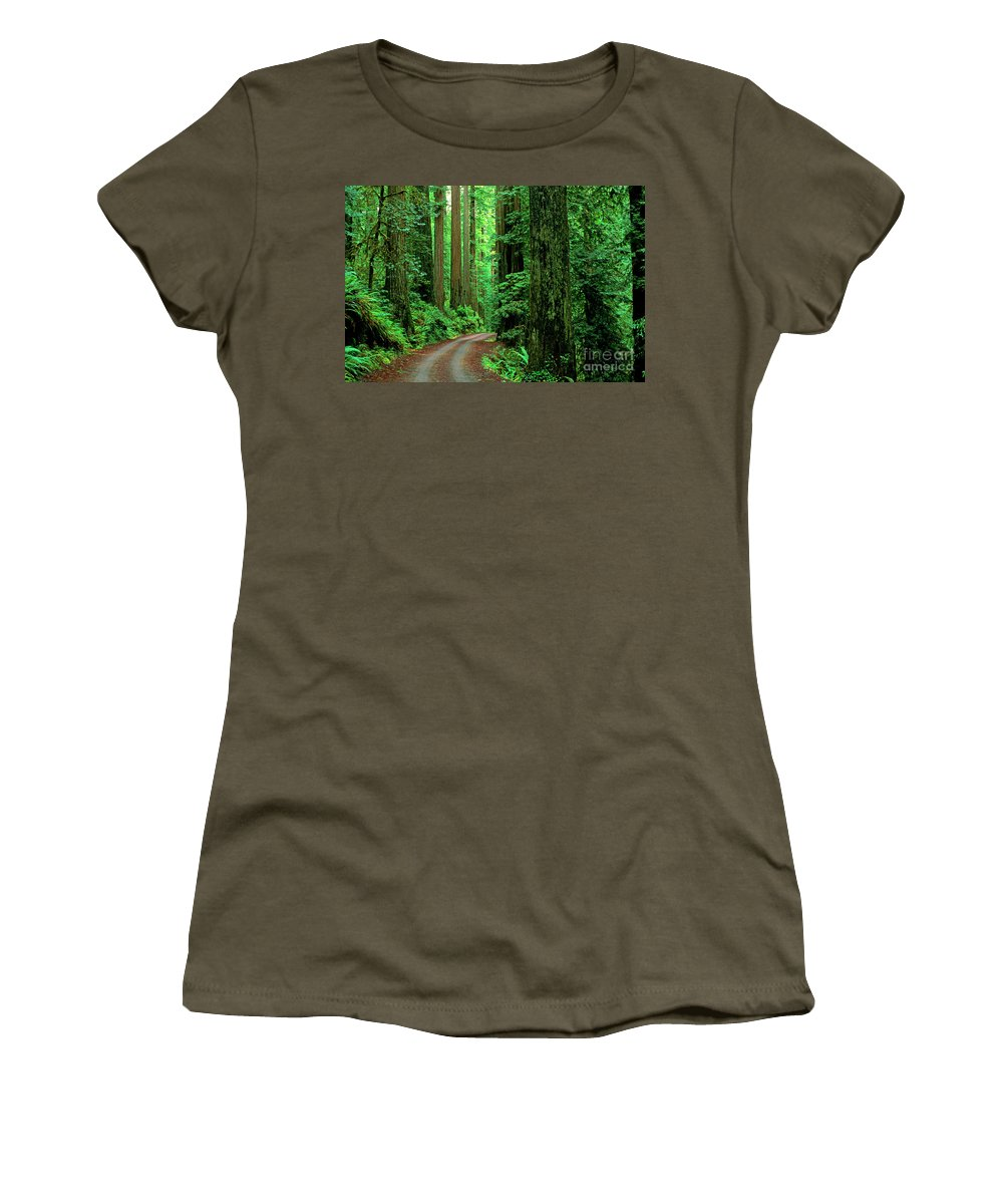 Nature Women's T-Shirt featuring the photograph Jedediah Smith Redwoods              by Jim Corwin