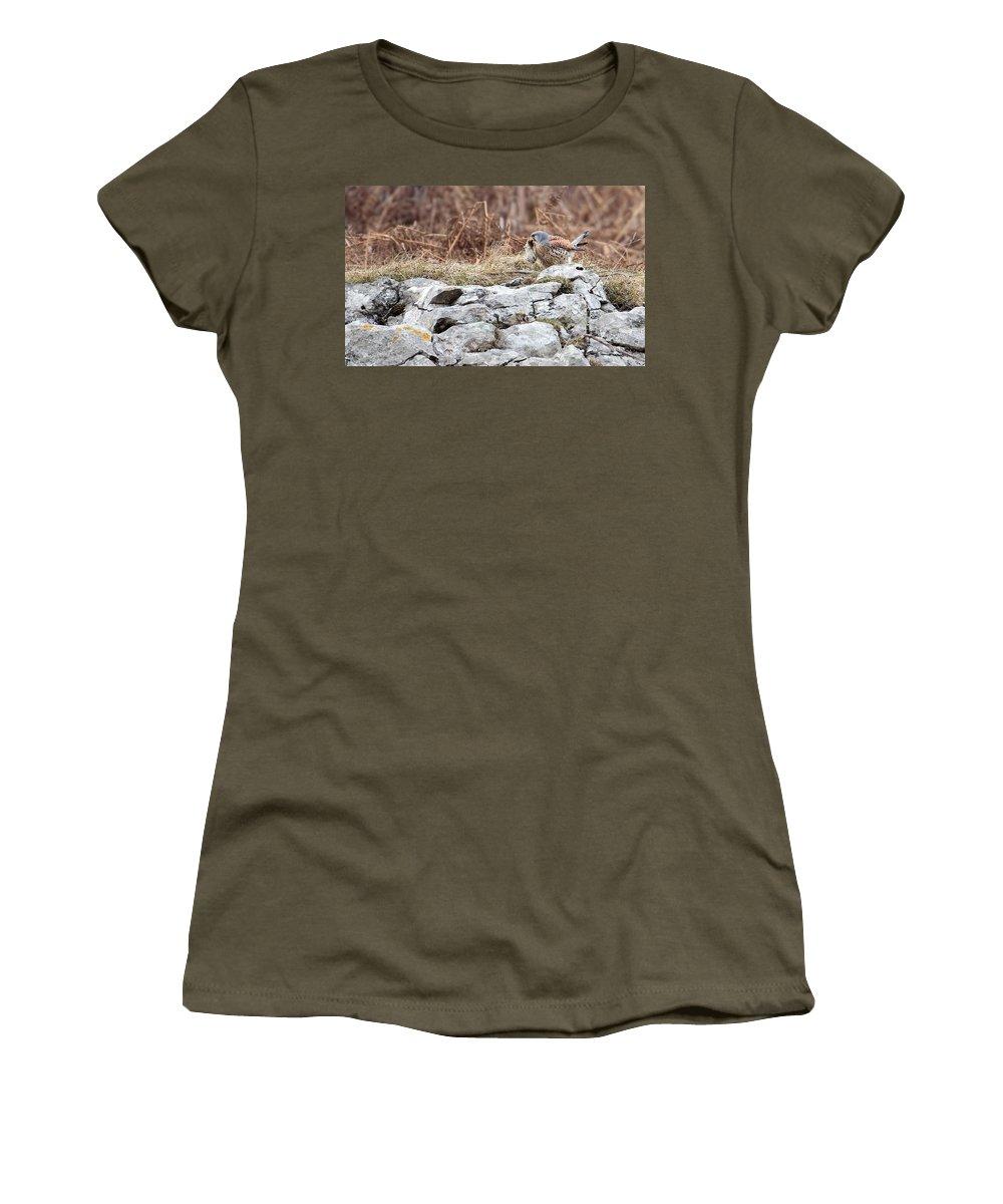 Kestrel Women's T-Shirt (Athletic Fit) featuring the photograph Kestrel With Prey by Bob Kemp