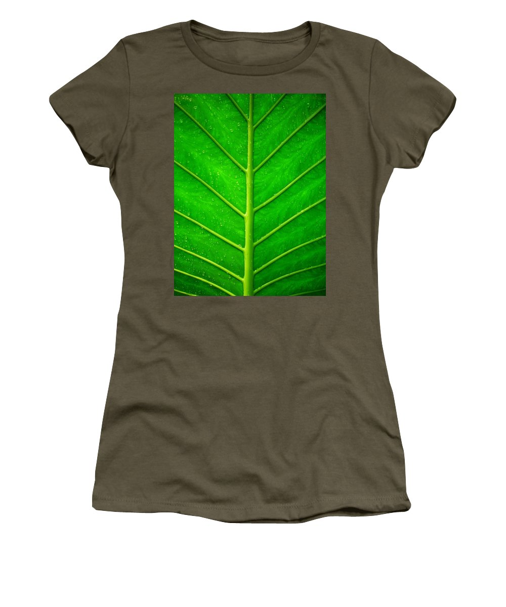 Plant Women's T-Shirt featuring the photograph Kiss The Rain ... by Juergen Weiss
