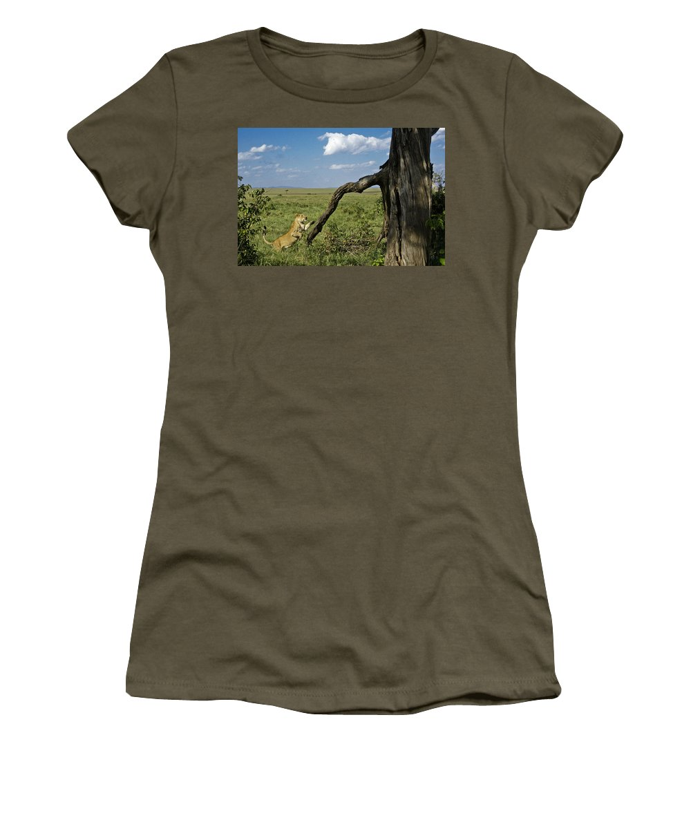 Africa Women's T-Shirt featuring the photograph Leaping Lion by Michele Burgess