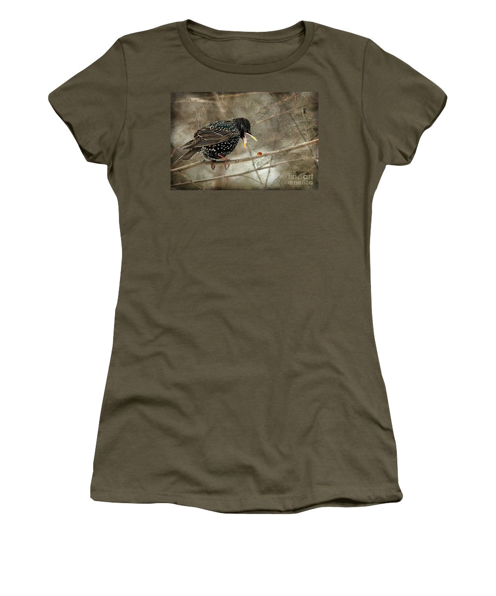 Bird Women's T-Shirt featuring the photograph Let's Do Lunch by Lois Bryan